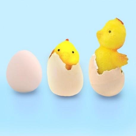 Magické vejce se zvířátkem