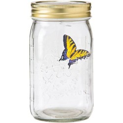 Věčný motýl - Yellow swallowtail