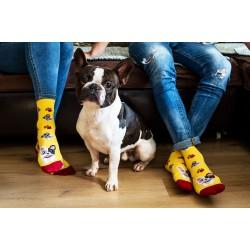 Veselé ponožky HESTY - Francouzský buldoček