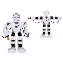 Interaktívny robot na diaľkové ovládanie